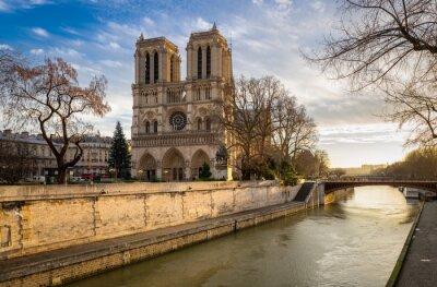 Plakat Rano widok katedry Notre Dame de Paris na Ile de la Cite. Sekwana i katedra są widoczne w miękkim świetle zimowego. Paryż, 4. dzielnica Paryża, Francja.