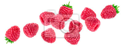 Plakat Raspberry isolated on white background, falling raspberries, collection