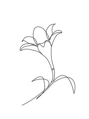Plakat Ręcznie rysowane kwiaty lilii. Czarno-biały ilustracja wektorowa