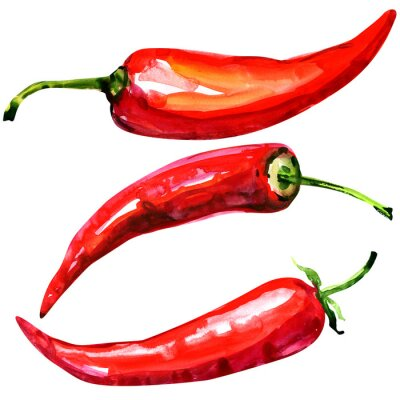 Plakat Red hot chili peppers on white background