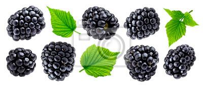 Plakat Ripe blackberry isolated on white background closeup
