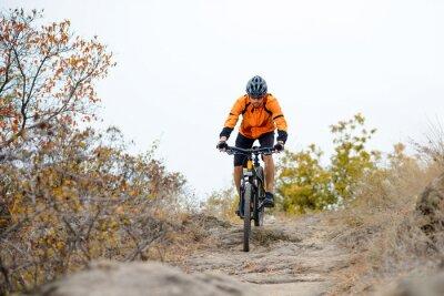 Plakat Rowerzysta jazdy na rowerze na pięknej Jesień Mountain Trail