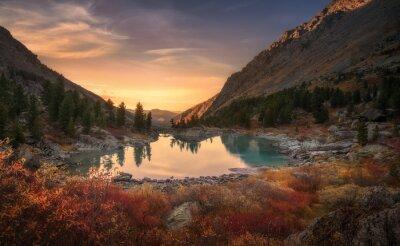 Plakat Różowy Niebo I jak lustro jeziora na zachodzie z czerwonym kolorów wzrostu na pierwszym planie, Góry Ałtaj Highland Natura Pejzaż jesienny Photo