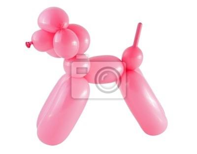 Plakat Różowy psa wykonane z balonu na białym