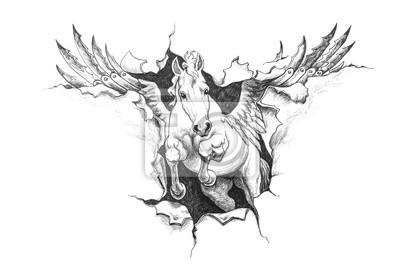 Plakat rysunek o wkiem pegaza na wymiar t o miejsce for Disegni cavalli alati