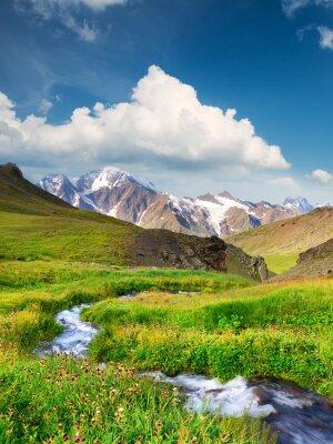 Plakat Rzeka na obszarze górskim. Piękny krajobraz naturalny w okresie letnim