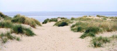 Plakat sand dunes and beach