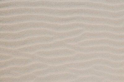 Plakat Sand Dunes and Beach Texture Background
