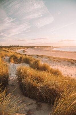 Plakat sand dunes at sunset