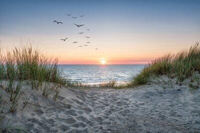 Plakat Sand dunes on the beach at sunset