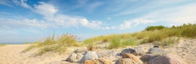 Plakat Sandy shore of the Baltic sea on a sunny summer day. Green grass and stones close-up. Clear blue sky with cirrus clouds. Idyllic seascape. Recreation theme. Germany