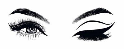 Plakat Seksowne, mrugające luksusowe oko z doskonale ukształtowanymi brwiami i pełnymi rzęsami. Pomysł na wizytówkę firmy, wektor typografii. Idealny wygląd salonu.