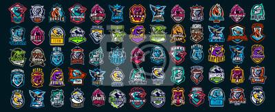 Plakat Set of animal emblems. Bear, dinosaur, eagle, leopard, wolf, horse, fox, lion, grizzly, raptor, hawk, jaguar, cat, lynx, leo, stallion, birds. Sports mascots, colorful collection, vector illustration