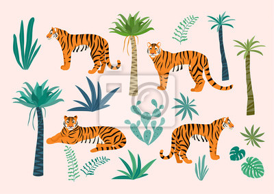 Plakat Set of tigers and tropical leaves. Trendy vector illustration.
