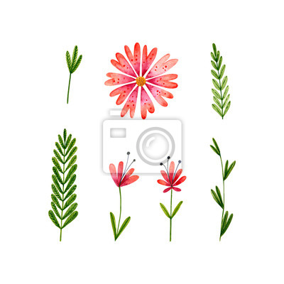 Plakat Set of watercolor flowers and leaves. Hand drawn illustration isolated on white. Floral collection is perfect for Valentine's Day design, greeting card, poster, wedding invitations, romantic wallpaper