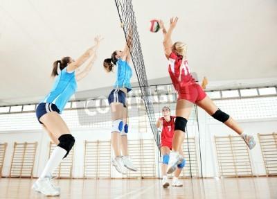 Plakat siatkówka gry sportowe z grupy młodych dziewcząt piękne Halowe na arenie sportu