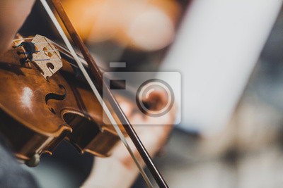Plakat Side views of classical instruments - violin, double basses, cellos, closeup of hands