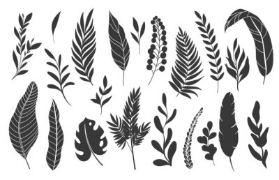 Plakat Silhouettes tropical leaves. Monochrome glyph forest palm monstera fern hawaiian leaves. Set tropical elements vector illustration.