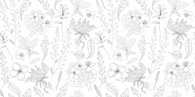 Plakat Simple delicate floral pattern. Thin lines. Summer fabric, textile and packaging design. Medicinal herbs and wildflowers. Vintage herbs. Vector botanical illustration