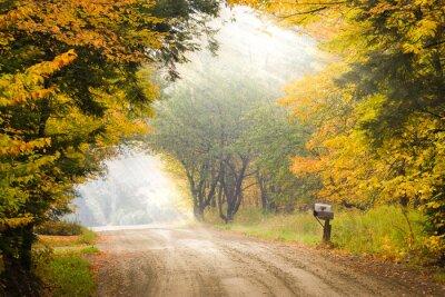 Plakat Skrzynka pocztowa na słupie na stronie polnej drodze podczas spadek liści