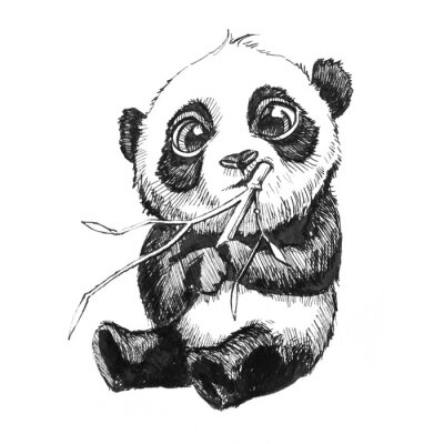 Plakat słodki berbeć panda bear ilustracja, ręcznie rysowane szkic panda bear jedzenie bambusa, odizolowane na białym tle
