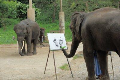 Plakat Słoń maluje obraz słoni