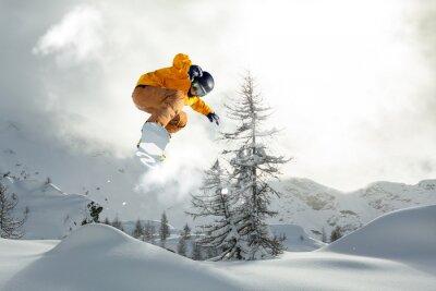 Plakat snowboarder freerider
