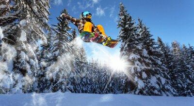 Plakat snowboardzistów w sosen