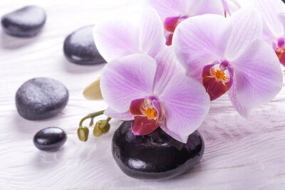 Plakat spa and bath with orchids