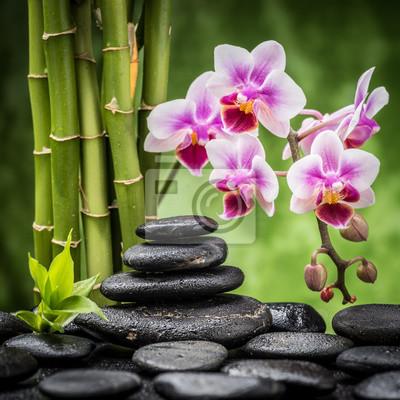 spa martwa natura z zen kamienie bazaltowe, orchidei i bambusa