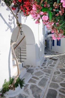Plakat Spokojna ulica z powrotem w małej tradycyjnej wsi greckiej
