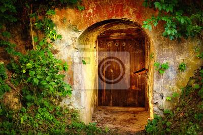 Cudowna Plakat stare drzwi wejściowe w lesie. Piwnica na wino na wymiar HX31