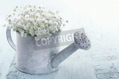 Plakat Starego rocznika metalu konewka wypełniona białego dziecka oddech Gypsophila kwiatów na jasnoniebieskim tle shabby chic