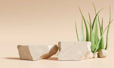 Plakat  Stone product display podium stand with aloe vera on brown background. 3D rendering