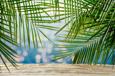 Plakat Summer background of sand with green palms and sea landscape
