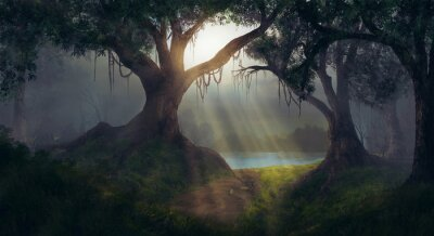 Plakat Sun promienie w lesie