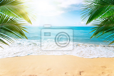 Plakat Sunny tropical beach with palm trees