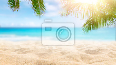 Plakat  Sunny tropical Caribbean beach with palm trees and turquoise water