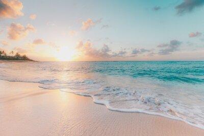 Plakat sunset on the beach