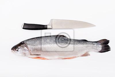 Świeże surowego łososia czerwone ryby samodzielnie na białym tle. Płaskie leże. Widok z góry