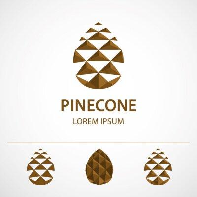 Plakat Szablon logo szyszka, odmiany. Niska poligonalna ikona lub pojęcie wizerunek, wektorowa ilustracja.
