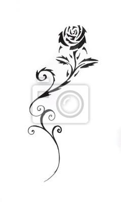 Szkic Tatuaż Sztuki Czarna Róża Plakaty Redro