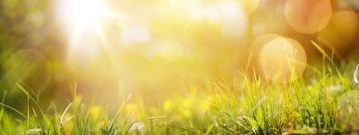 Plakat sztuka streszczenie tło wiosna lub lato tła ze świeżych g