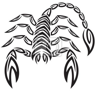 Tatuaż Znak Zodiaku Skorpion Znak Astrologia Plakaty Redro