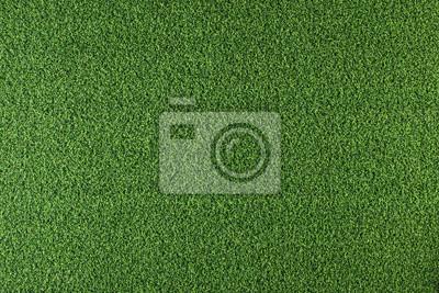 Plakat Texture of green grass
