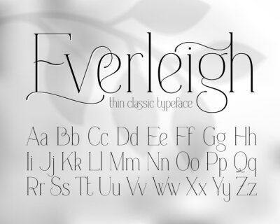 Plakat Thin classic style font with grayscale abstract background