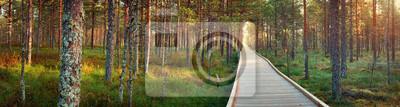 Plakat torfowiska Viru w Lahemaa National Park jesienią. Drewniana ścieżka w pięknym dzikim miejscu w Estonii