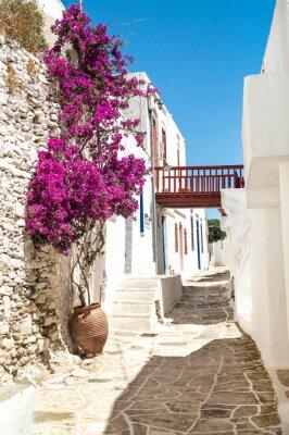 Plakat Tradycyjne greckie alley na Sifnos island, Grecja