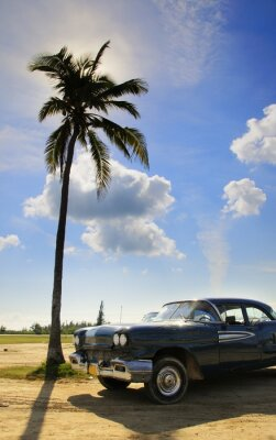 Plakat tropical oldtimer