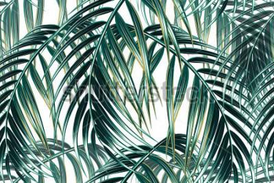 Plakat Tropikalna palma opuszcza bezszwowego wektorowego kwiecistego deseniowego tło